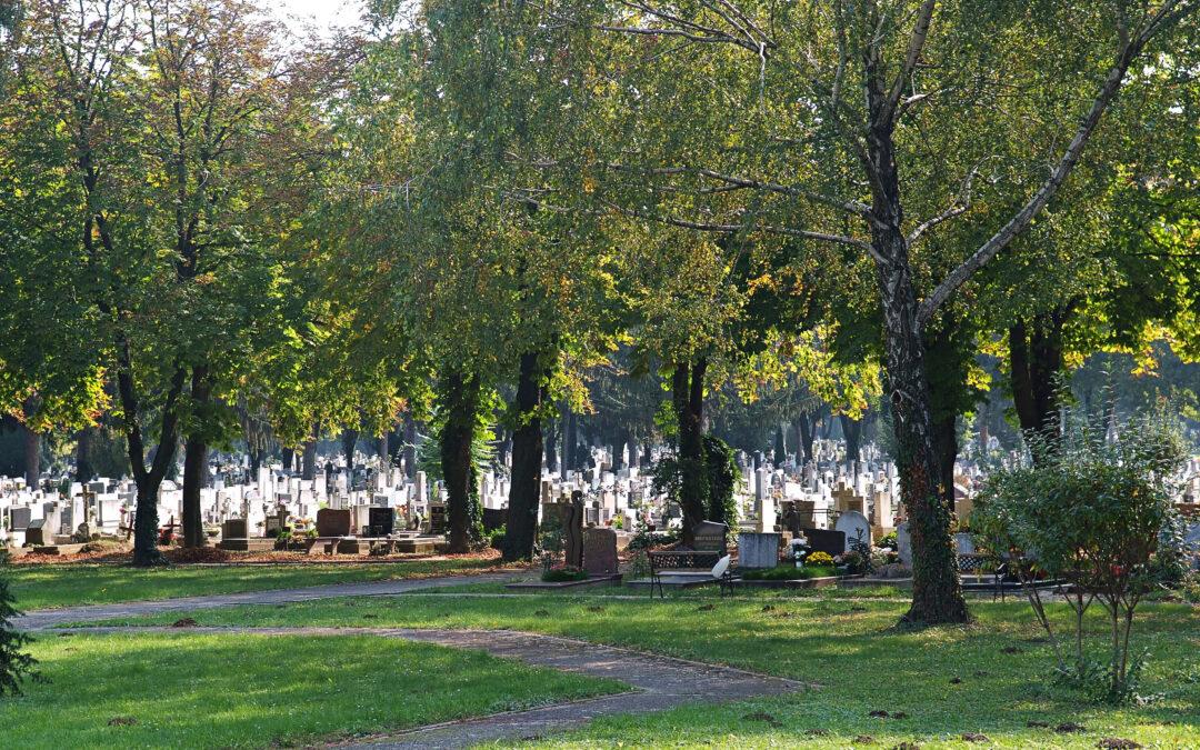 Kaszálási rend a Pécsi Köztemetőben 2021. 09. 21.- 09. 24. között